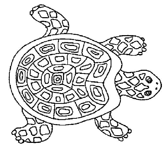 Gs : tortue à colorier