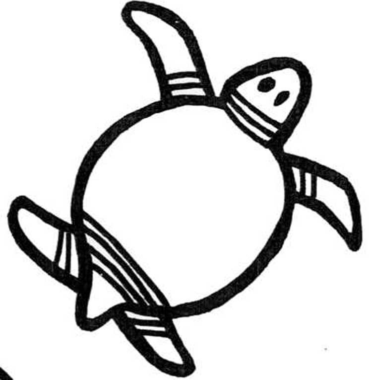 Graphisme n 11 les contours ms gs locazil - Dessins tortue ...